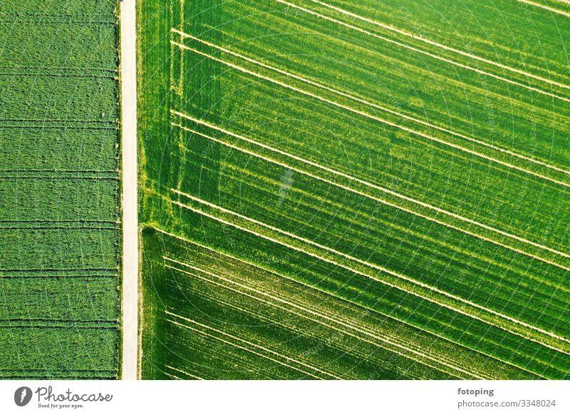 Die Erde von oben wandern Landwirtschaft Forstwirtschaft Natur Landschaft Luft Wiese Feld Sehenswürdigkeit außergewöhnlich fantastisch Umweltschutz Bayern Boden