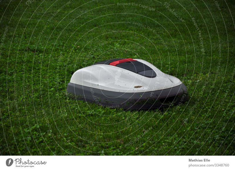 Rasenmäher Roboter Landschaft Pflanze Gras Garten grau grün weiß rasenmähen Rasenmähroboter bequem Helfer Gartenhelfer Gartenarbeit Gartengeräte Farbfoto