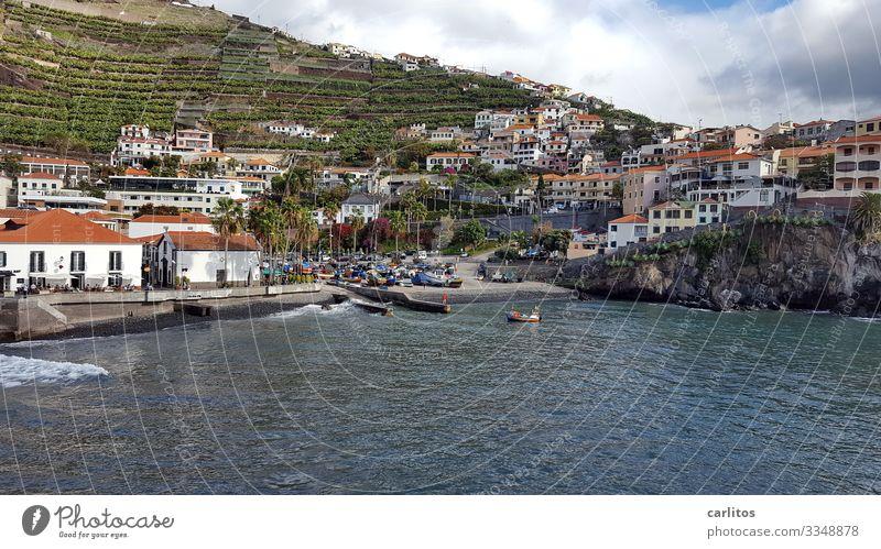 Madeira | Câmara de Lobos Portugal Camara de Lobos Fischerdorf Tourismus Küste Meer Atlantik Boote Fischerboote Churchill Bay Höhle der Mönchsrobben Cabo Girão