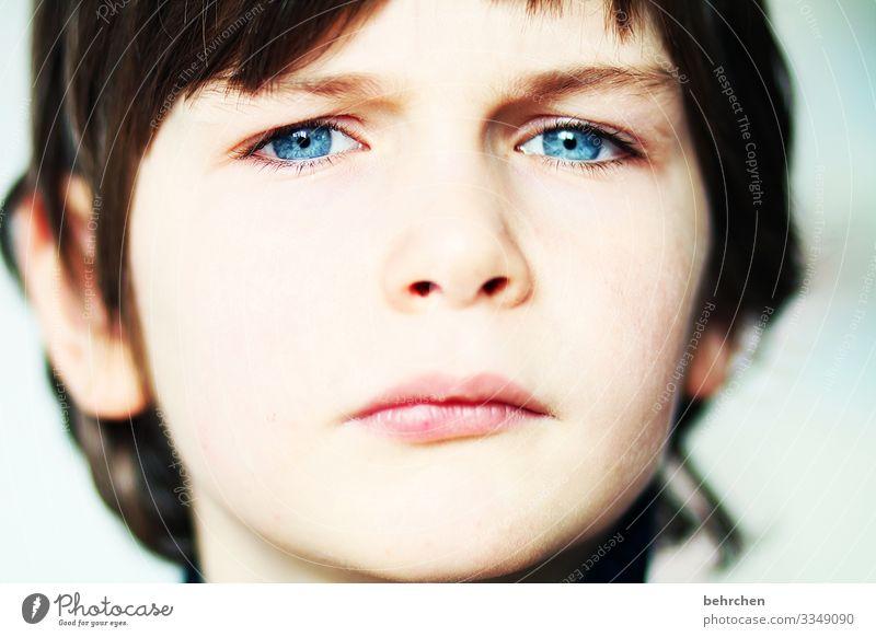 close up Kind Junge Familie & Verwandtschaft Kindheit Haut Kopf Haare & Frisuren Gesicht Auge Ohr Nase Mund Lippen 3-8 Jahre schön blau selbstbewußt