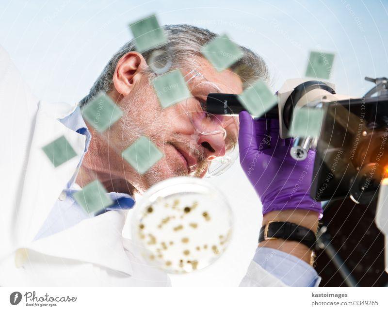 Biowissenschaftlerin, die mikroskopiert. Gesundheitswesen Medikament Wissenschaften Labor Arzt Arbeitsplatz Krankenhaus Technik & Technologie Mensch Mann