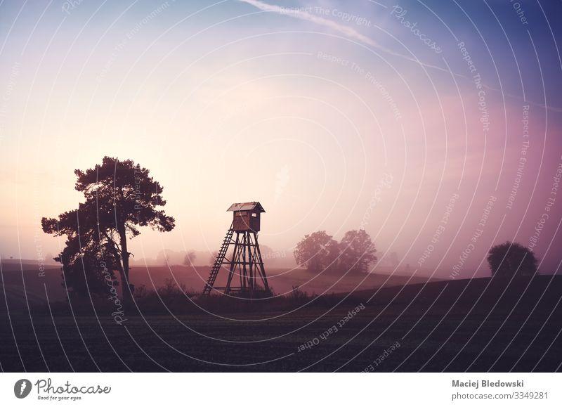 Ländliche Landschaft mit der Silhouette eines Jagdturms Natur Himmel Frühling Sommer Herbst Nebel Baum Wiese Feld dunkel Inspiration Ferne Schutz ländlich