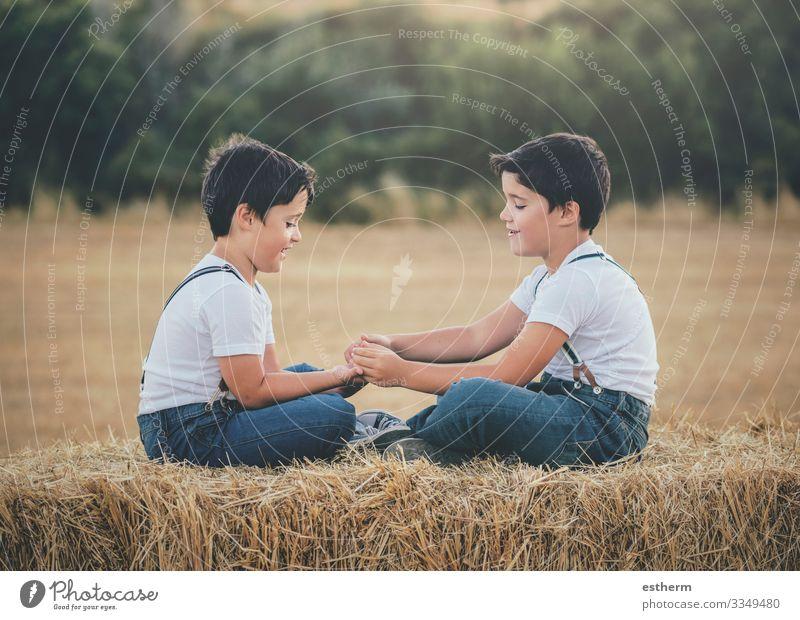 Brüder, die auf dem Weizenfeld spielen Lifestyle Freude Spielen Sommer Mensch maskulin Kind Geschwister Bruder Familie & Verwandtschaft Freundschaft Kindheit 2
