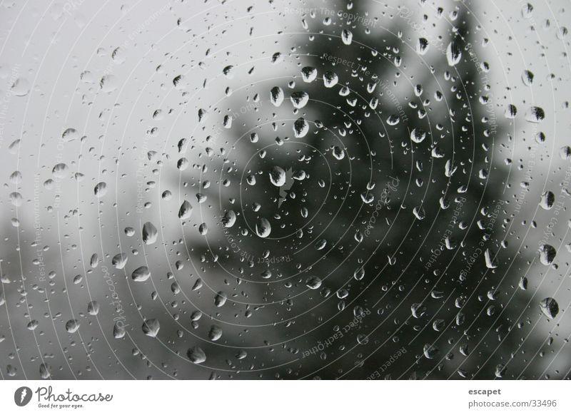 Regentropfen kalt Fenster nass feucht