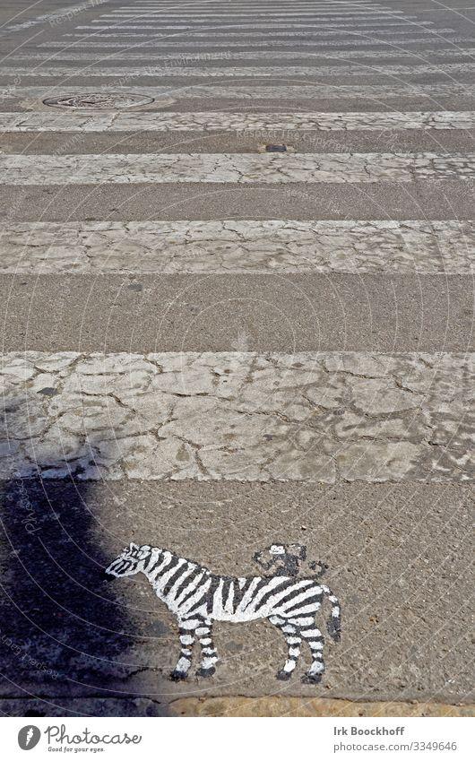 gemaltes Zebra vor Zebrastreifen auf der Straße Kunst Kunstwerk Stadtzentrum Verkehr Verkehrswege Fußgänger Wege & Pfade Verkehrszeichen Verkehrsschild fahren