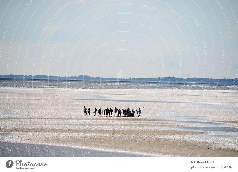 Gruppe Schulkinder mitten im Wattenmeer an der Nordsee Ferien & Urlaub & Reisen Tourismus Ausflug Meer Mensch Jugendliche Kindergruppe 8-13 Jahre Kindheit Natur