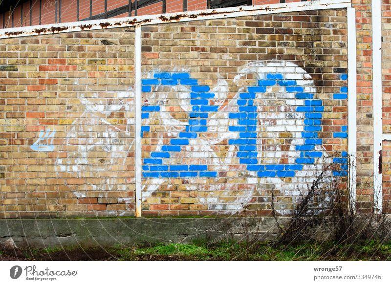 Blaue Ziffer 20 auf Ziegelmauer Ziffern & Zahlen Farbfoto Menschenleer Außenaufnahme Wand Mauer Textfreiraum links Ziegelmauerwerk Hauswand Hausnummer blau