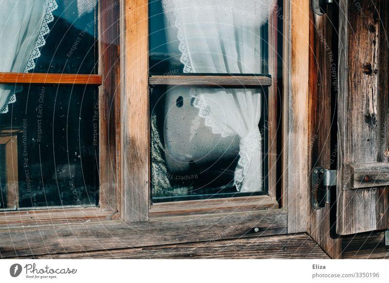 Hüttenzauber Einfamilienhaus Fenster urig Stimmung Winterurlaub Holz Gardine altmodisch gemütlich beschlagen Aussicht Häusliches Leben Stalking ländlich