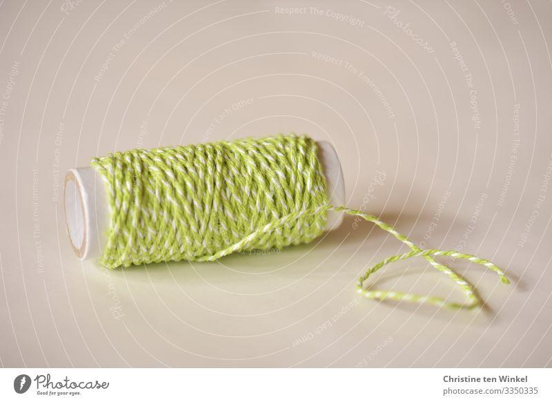 Schnur in grün und weiß auf einer Papprolle Dekoration & Verzierung Kitsch Krimskrams Geschenkband Schleifenband hell schön Kreativität Ordnung Perspektive rein