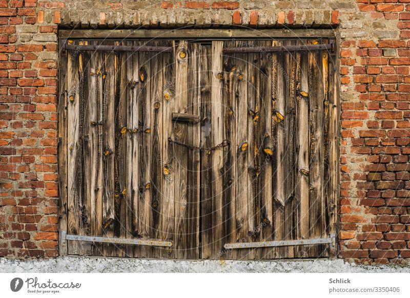 Altes verwittertes Holztor in Backsteinwand Architektur Tor Wand Backsteinmauer Klinkerwand alt Vergänglichkeit verfallen roh Holzmaserung Holztextur