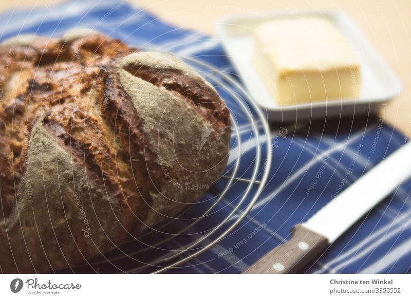 frisches Brot, Butter und Brotmesser auf einem blau-weiß karierten Tuch Lebensmittel Ernährung Frühstück Slowfood Messer Küchenhandtücher Linie authentisch Duft