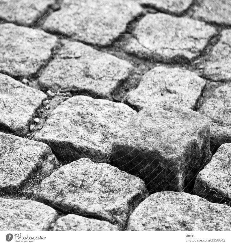 abgehoben | harte Zeiten Verkehr Personenverkehr Straße Wege & Pfade Kopfsteinpflaster stolpern Stolperfalle Stein Wachsamkeit Leben Überraschung Nervosität