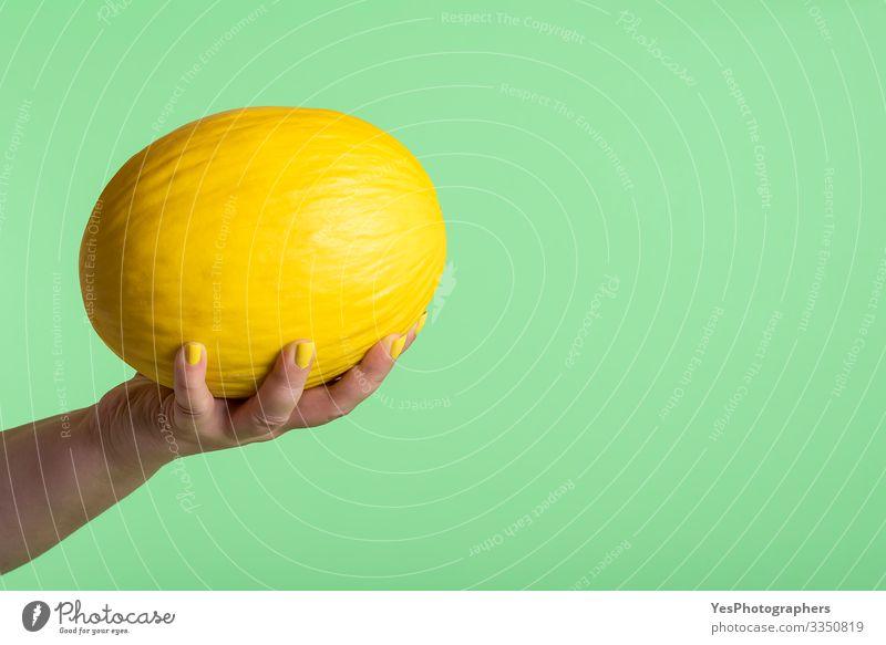 Honigmelone in der Hand gehalten. Ganze gelbe Melone in Frauenhand Frucht Dessert Ernährung Frühstück Bioprodukte Vegetarische Ernährung Diät kaufen