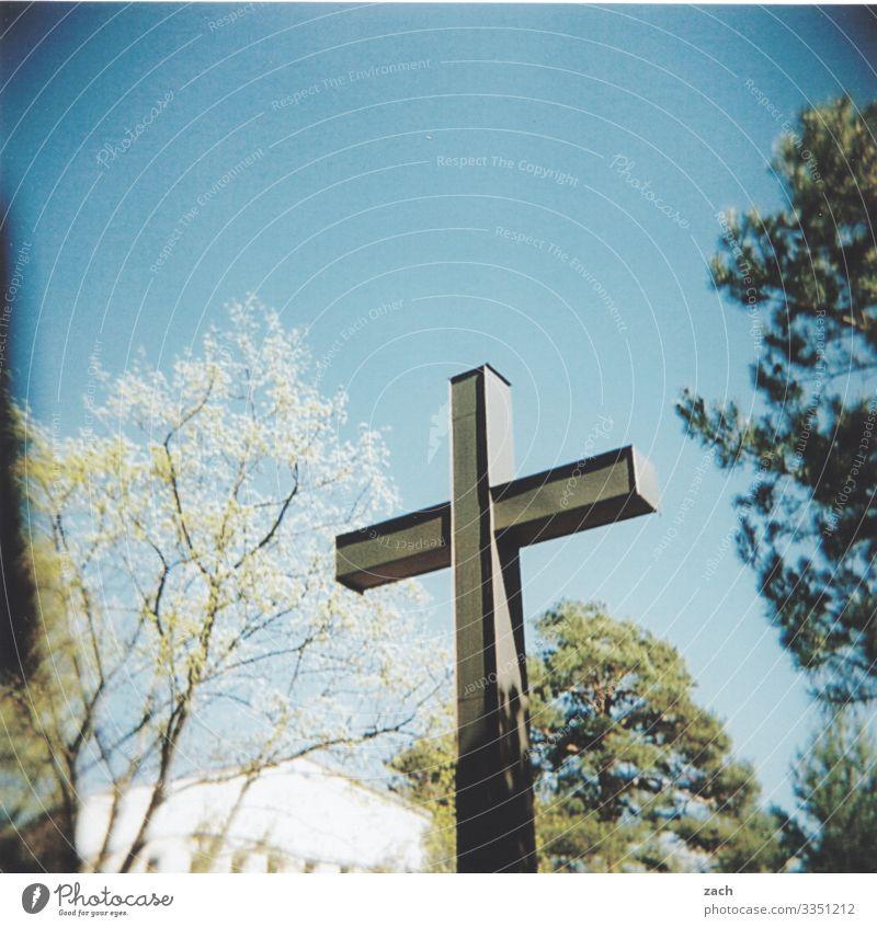 Abschied Himmel Schönes Wetter Pflanze Baum Dorf Haus Friedhof Zeichen Kreuz blau Glaube Traurigkeit Trauer Ende Religion & Glaube Tod Vergänglichkeit verlieren