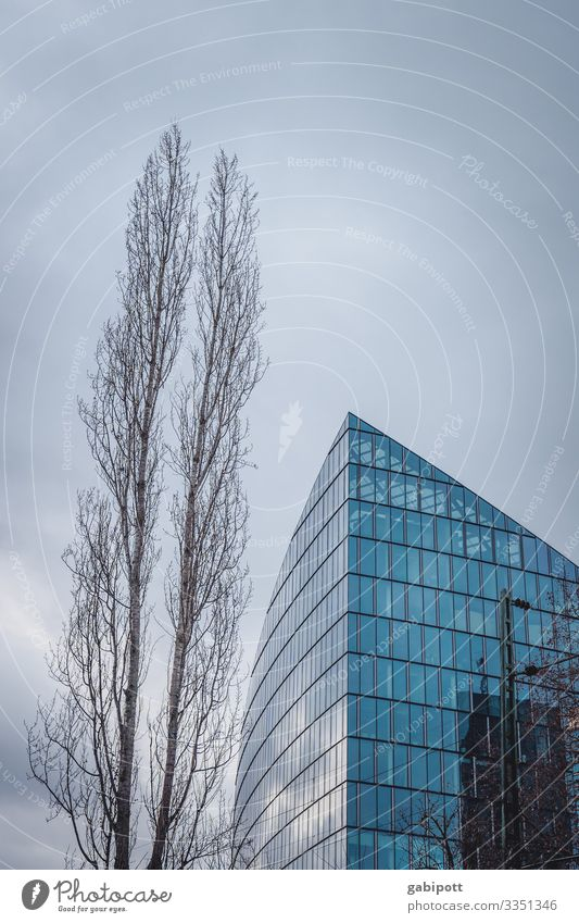 EZB Frankfurt Haus Gebäude Hochhaus Architektur Fenster Fassade Himmel Außenaufnahme Stadt hoch blau Tag Menschenleer Farbfoto Stadtzentrum Froschperspektive