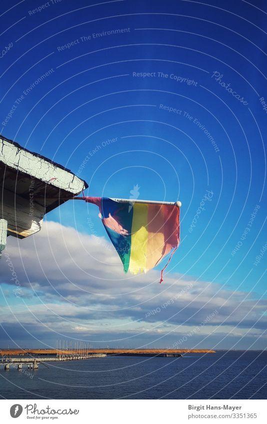 Regenbogenflagge ruhig Strand Natur Landschaft Wasser Himmel Wolken Wetter Schönes Wetter Wind Wellen Küste Seeufer Bucht Menschenleer Hütte Gebäude Bootsfahrt