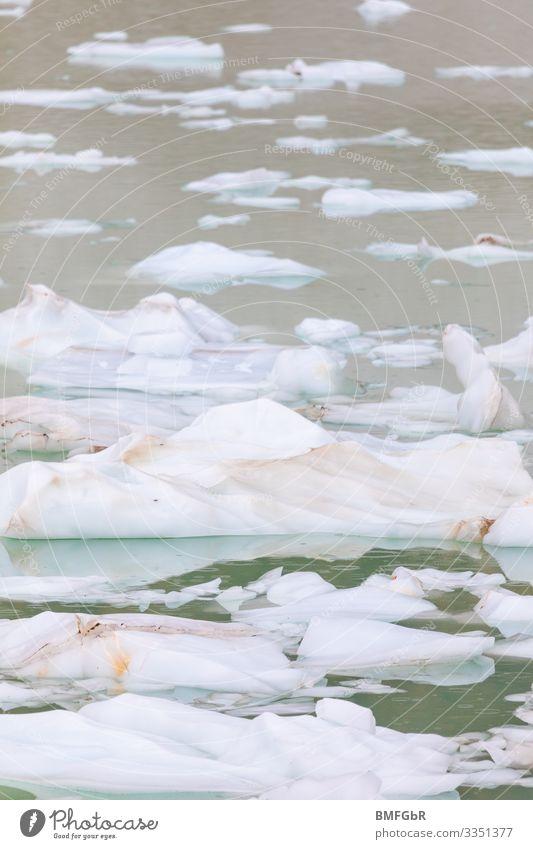 Eisschollen im Wasser Natur Pflanze Landschaft Meer Umwelt kalt Küste See Wetter dreckig gefährlich Klima Frost Zukunftsangst Unwetter