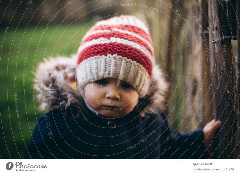 Kleinkind im Herbst Mensch maskulin Kind Junge Kindheit 1 1-3 Jahre beobachten lernen träumen authentisch Freundlichkeit Fröhlichkeit Gesundheit Glück gut schön