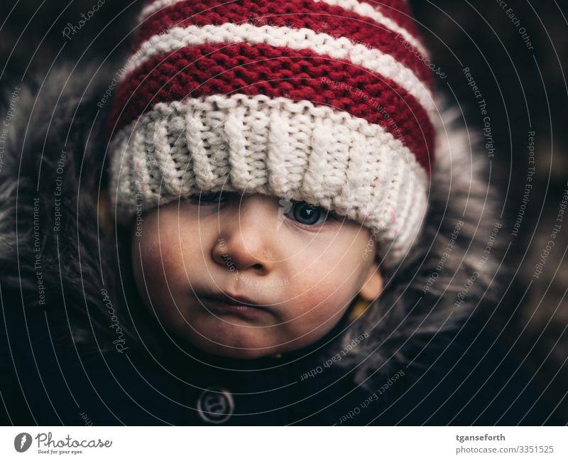 Kleinkind Mensch maskulin Kind Junge Kindheit Gesicht 1 1-3 Jahre Jacke Mantel Stoff Fell Mütze Denken entdecken Blick authentisch Freundlichkeit schön nah rot