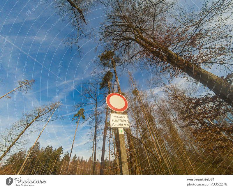 Deutsches NUR FORSTVERKEHR-Schild vor Bäumen Natur Pflanze Himmel Baum Straße Kontrolle Sprache Zeichen Forstwirtschaft Mitteilung Warnschild Hinweisschild