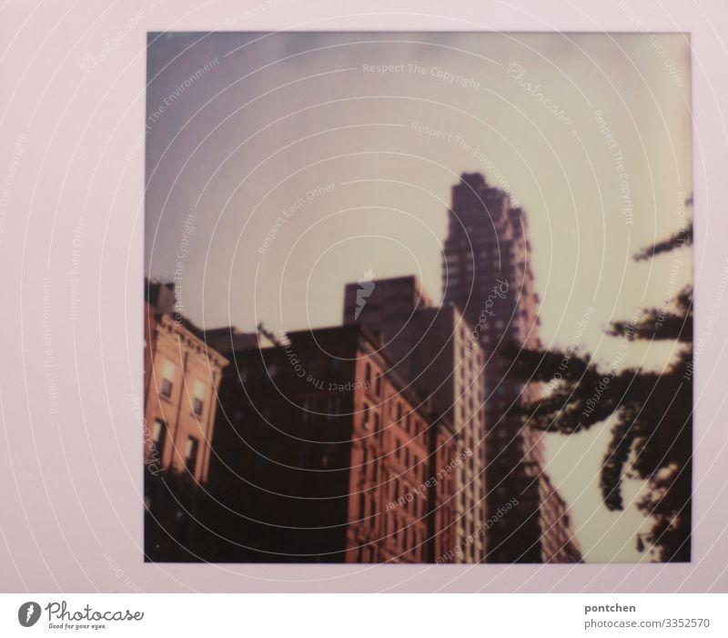 Hochhäuser in New York Polaroid spectra new york hochhaus ast baum Großstadt usa New York City Skyline Amerika Stadtleben Architektur rahmen rot