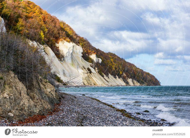 Ostseeküste auf der Insel Moen in Dänemark Erholung Ferien & Urlaub & Reisen Tourismus Strand Meer Wellen Natur Landschaft Wasser Wolken Herbst Baum Wald Felsen