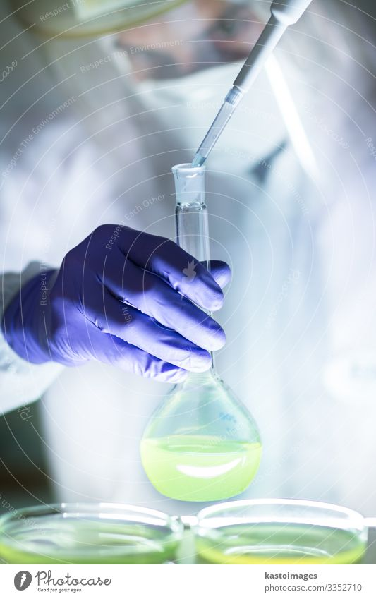 Arbeiten im Labor mit einem hohen Schutzgrad. Teller Gesundheitswesen Medikament Leben Wissenschaften Prüfung & Examen Arbeit & Erwerbstätigkeit Arzt