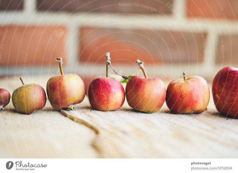Äpfel in Reihe Größenunterschied Größenvergleich Apfel Apfelernte rot Ernte aufgereit Ordnung Ordnungsliebe Gesundheit