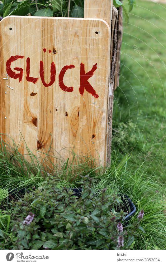 Gesundheit I Glück Garten Holz Schrift geschrieben Buchstaben Wort Schriftzeichen Text Typographie Zeichen Symbole & Metaphern Vorfreude Zufriedenheit