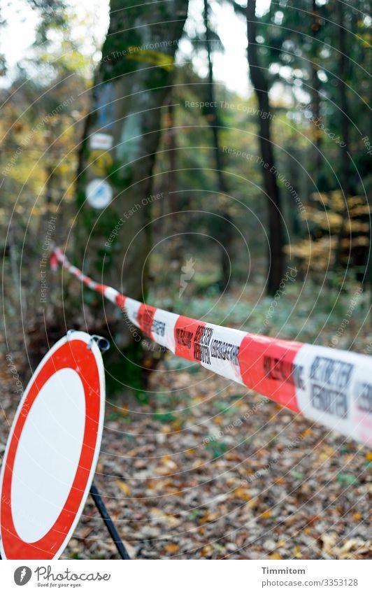 Wald nicht betreten! Umwelt Natur Pflanze Zeichen Hinweisschild Warnschild Verkehrszeichen braun grün rot weiß Gefühle bedrohlich Verbote Lebensgefahr