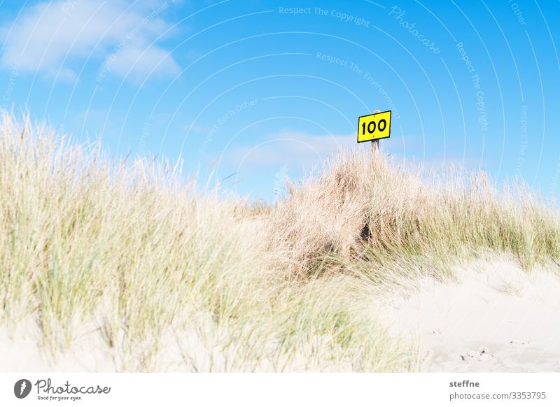100 Natur Landschaft Himmel Sommer Schönes Wetter Erholung Stranddüne Dünengras Meer Schilder & Markierungen Farbfoto Außenaufnahme Menschenleer