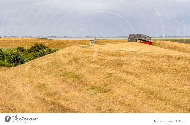 Spiekeroog in East Frisia Sommer Meer Insel Landwirtschaft Forstwirtschaft Landschaft Wiese Küste Nordsee Brücke Wege & Pfade authentisch Ostfriesland