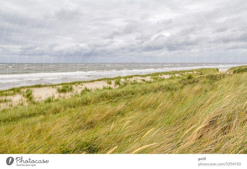 coastal scenery at Spiekeroog Erholung Sommer Strand Meer Insel Wellen Natur Landschaft Sand Wasser Küste Nordsee authentisch Ostfriesland Landkreis Friesland
