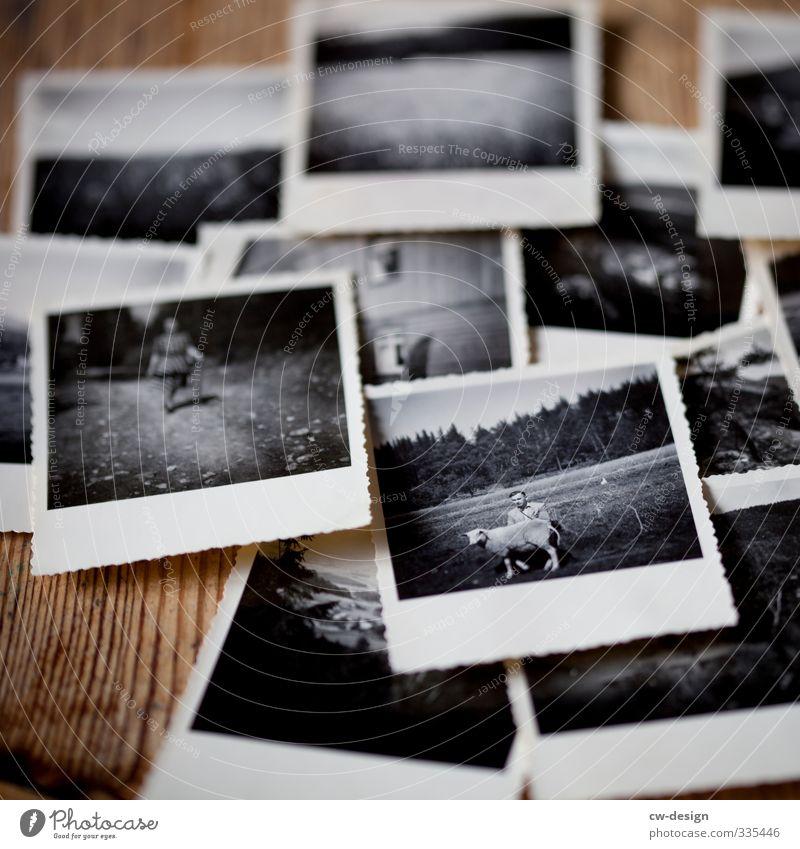 World Photography Day - Celebrate Photography with your friends Lifestyle Freizeit & Hobby Ferien & Urlaub & Reisen Mensch Junger Mann Jugendliche Erwachsene