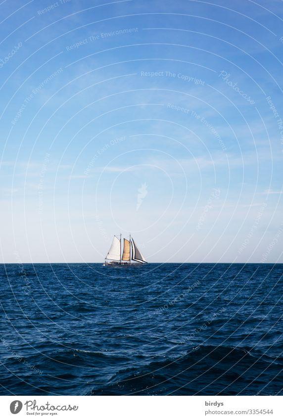 Segelboot, Segelschiff Freizeit & Hobby Ferien & Urlaub & Reisen Tourismus Ferne Sommer Meer Wellen Segelurlaub Himmel Horizont Klimawandel Schönes Wetter Wind