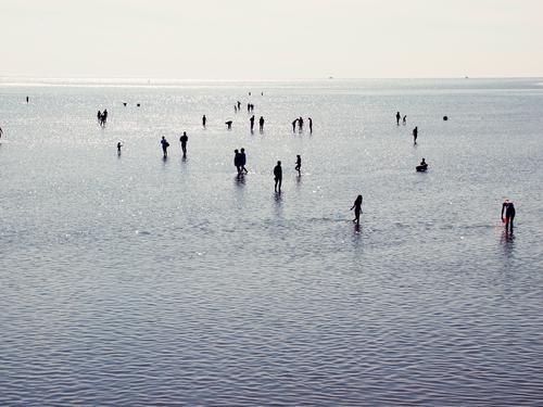 Wasservergnügen Schwimmen & Baden Ferien & Urlaub & Reisen Tourismus Sommerurlaub Strand Meer Wellen Mensch Leben Menschenmenge Küste Nordsee Erholung Spielen