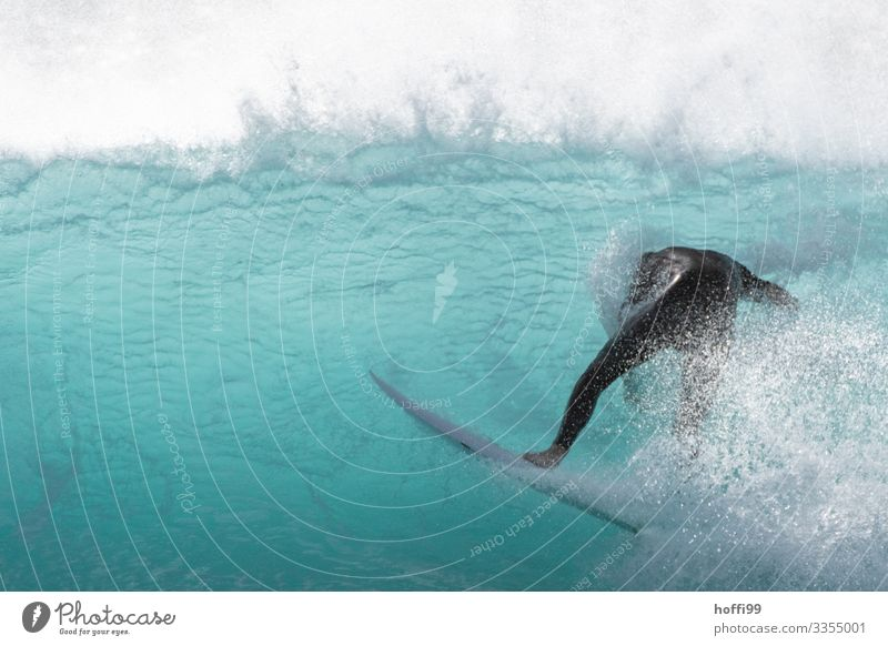 Unverhoffte Wendung Surfen Surfer Surfbrett Mensch 1 18-30 Jahre Jugendliche Erwachsene Wasser Schönes Wetter Wellen Meer Schwimmen & Baden tauchen bedrohlich
