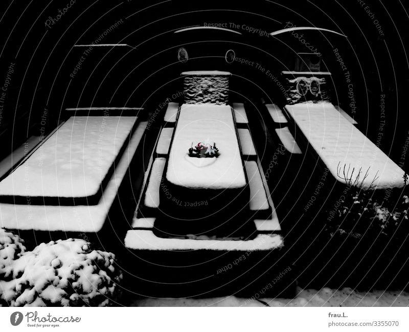 Grabschmuck Schnee Veurne Belgien Sehenswürdigkeit alt ästhetisch kalt schön Hoffnung Glaube Traurigkeit Trauer Tod Friedhof Blume Fotografie Farbfoto Tag