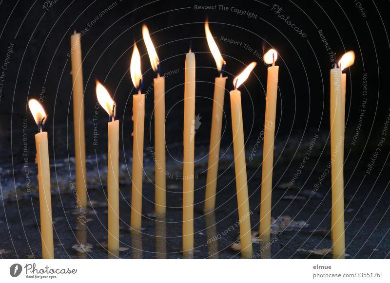 Hoffnung Kirche Kerze erinnern Kerzenschein Flamme bezahlen leuchten dünn hell Kraft trösten Trauer Tod Ewigkeit Gesellschaft (Soziologie) Glaube