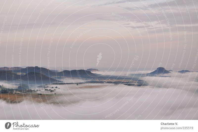 Frühnebel Natur Landschaft Luft Sonnenaufgang Sonnenuntergang Sommer Nebel Hügel Felsen Stein Wasser hoch grau orange weiß Stimmung schön träumen Sehnsucht