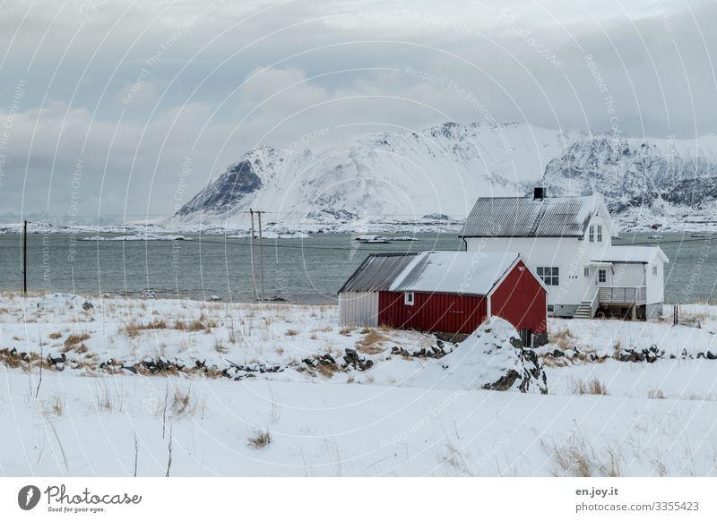 Schöner wohnen | Eiszeit Ferien & Urlaub & Reisen Winter Schnee Häusliches Leben Natur Landschaft Frost Berge u. Gebirge Fjord Lofoten Norwegen Skandinavien