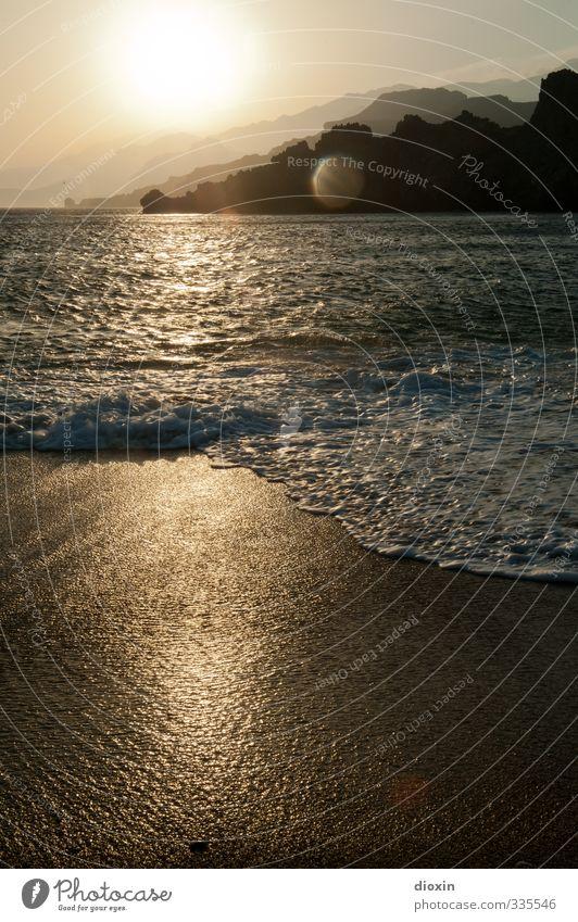golden brown Natur Ferien & Urlaub & Reisen Wasser Sommer Sonne Meer Erholung ruhig Landschaft Strand Ferne Umwelt Freiheit Sand Wellen Tourismus