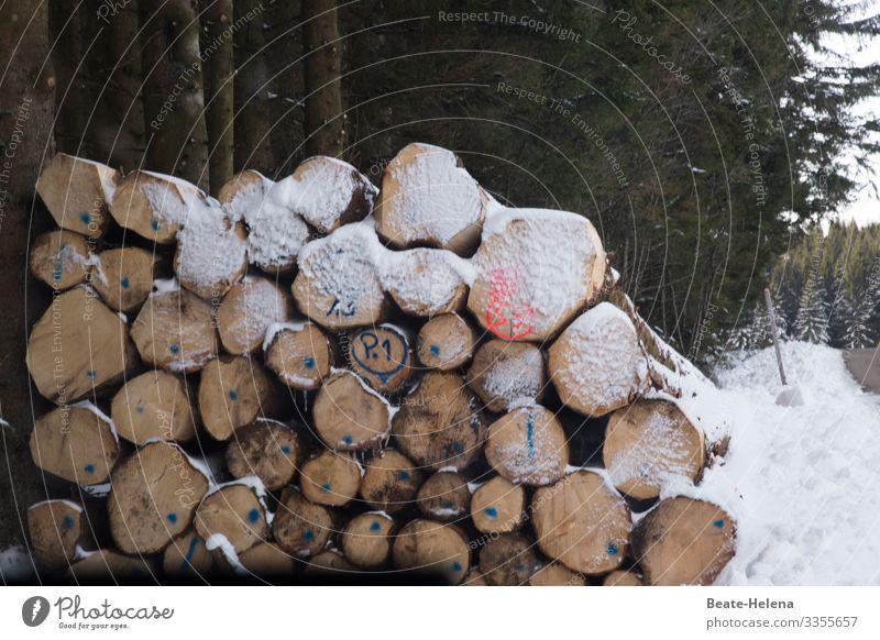 Schneegeschichten Landwirtschaft Forstwirtschaft Natur Winter Wetter Wald Schwarzwald Holz Schriftzeichen Ziffern & Zahlen alt wählen entdecken kaufen warten