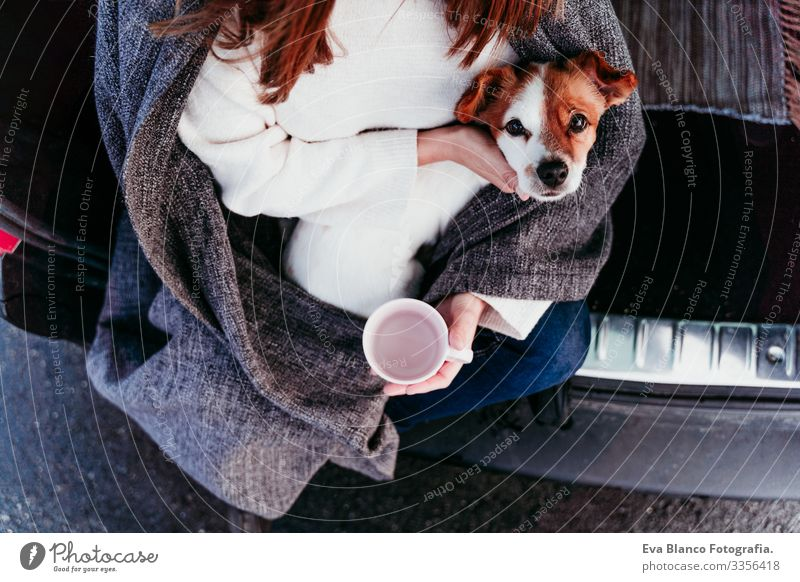 Frau und süßer Jack Russell Hund genießen draußen am Berg in das Auto. Reisekonzept. Wintersaison. Ansicht von oben PKW Schnee Berge u. Gebirge Außenaufnahme
