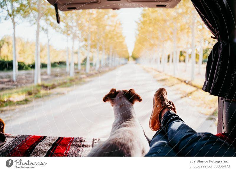 süßer jack russell hunde- und frauenbeine entspannen sich in einem van. reisekonzept Jack-Russell-Terrier Hund Frau Kleintransporter Ferien & Urlaub & Reisen