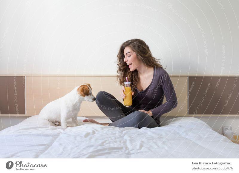 eine schöne junge Frau, die mit ihrem süßen kleinen Hund auf dem Bett liegt. Haus, Wohnung und Lebensstil. Sie trinkt Orangensaft. gemütlich Stimmung kuscheln
