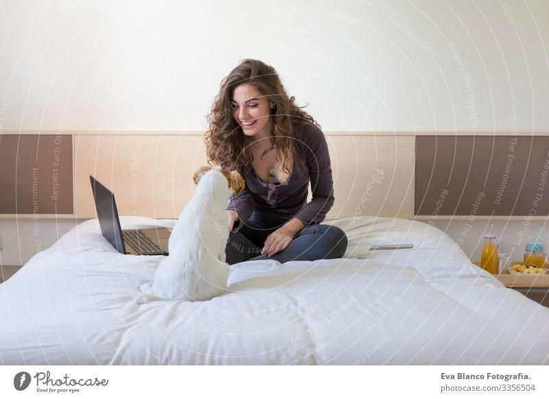 eine schöne junge Frau, die mit ihrem süßen kleinen Hund neben ihr auf dem Bett sitzt. Sie arbeitet am Laptop und lächelt. Frühstück zu Hause, in der Wohnung und Lebensstil