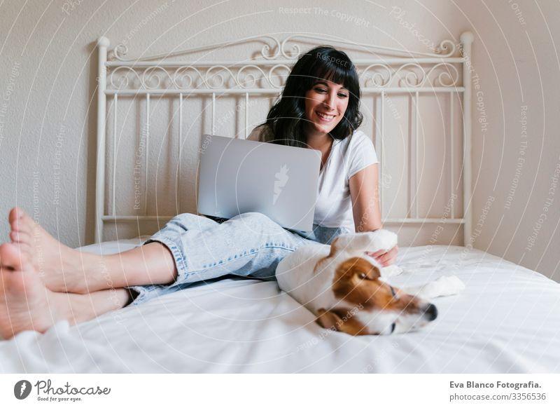 junge kaukasische Frau im Bett, die am Laptop arbeitet. Süßer kleiner Hund liegt daneben. Liebe zu Tieren und Technologiekonzept. Lebensstil im Haus