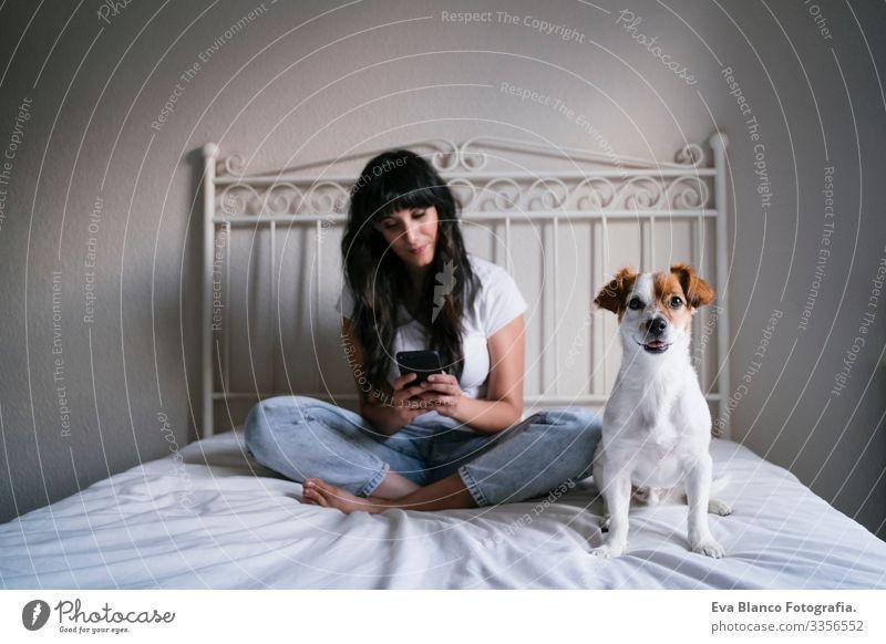 junge kaukasische Frau im Bett, die mit dem Handy telefoniert. Süßer kleiner Hund liegt daneben. Liebe zu Tieren und Technologiekonzept. Lebensstil im Haus