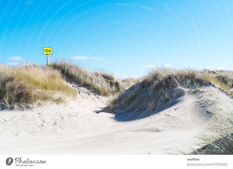 100 again Natur Landschaft Wolkenloser Himmel Schönes Wetter maritim Düne Stranddüne Dünengras Schilder & Markierungen Badeurlaub Oregon Farbfoto Außenaufnahme